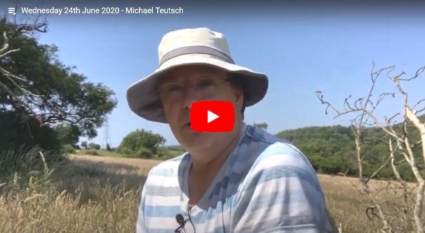 Daily Devotional Michael Teutsch