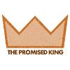 The Promised King - Studies in Matthew 1-4